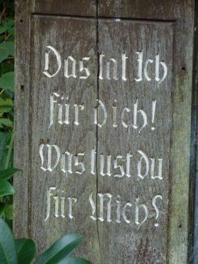170820_Wald_006